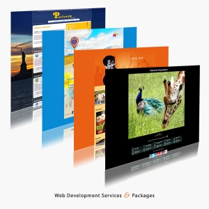 eCommerce Web Services & Marketing 1