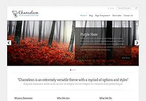 Responsive WordPress Themes 12