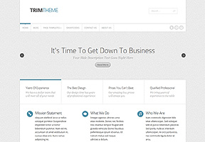 Responsive WordPress Themes 20